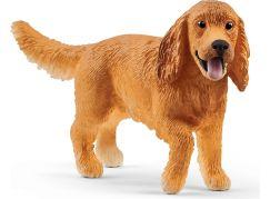 Schleich 13896 Zvířátko pes anglický kokršpaněl