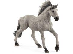 Schleich 13915 Zvířátko hřebec Sorraia Mustang