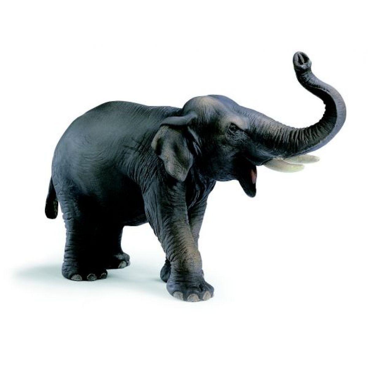 Schleich 14144 Slon Indický