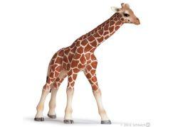 Schleich 14321 Žirafa mládě
