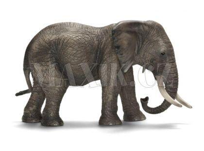 Schleich 14657 Slon Africký slonice