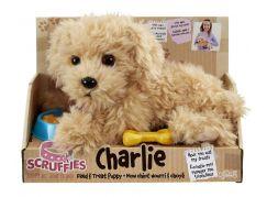 Scruffies štěňátko Charlie s miskou