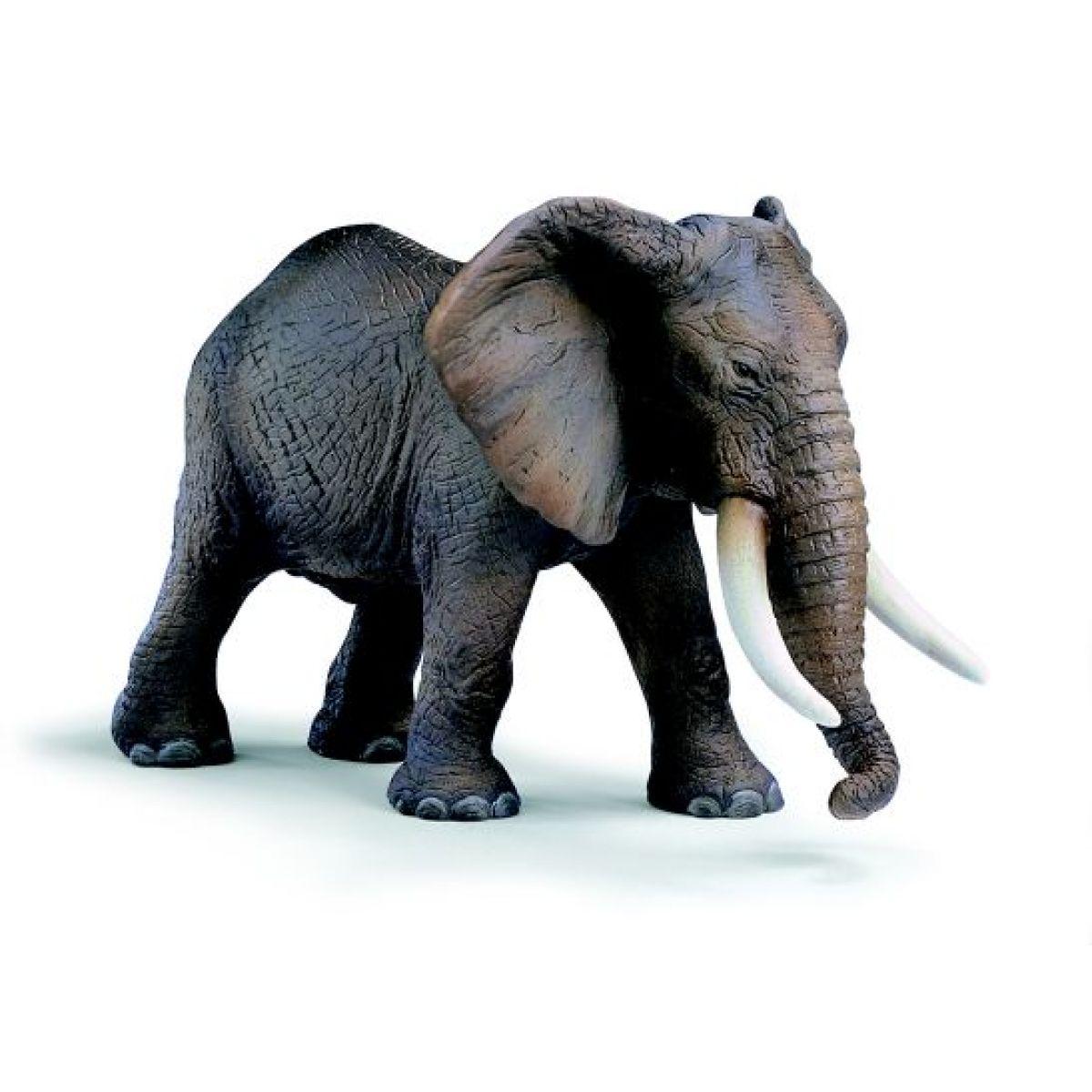 Slon Africký Schleich 14341