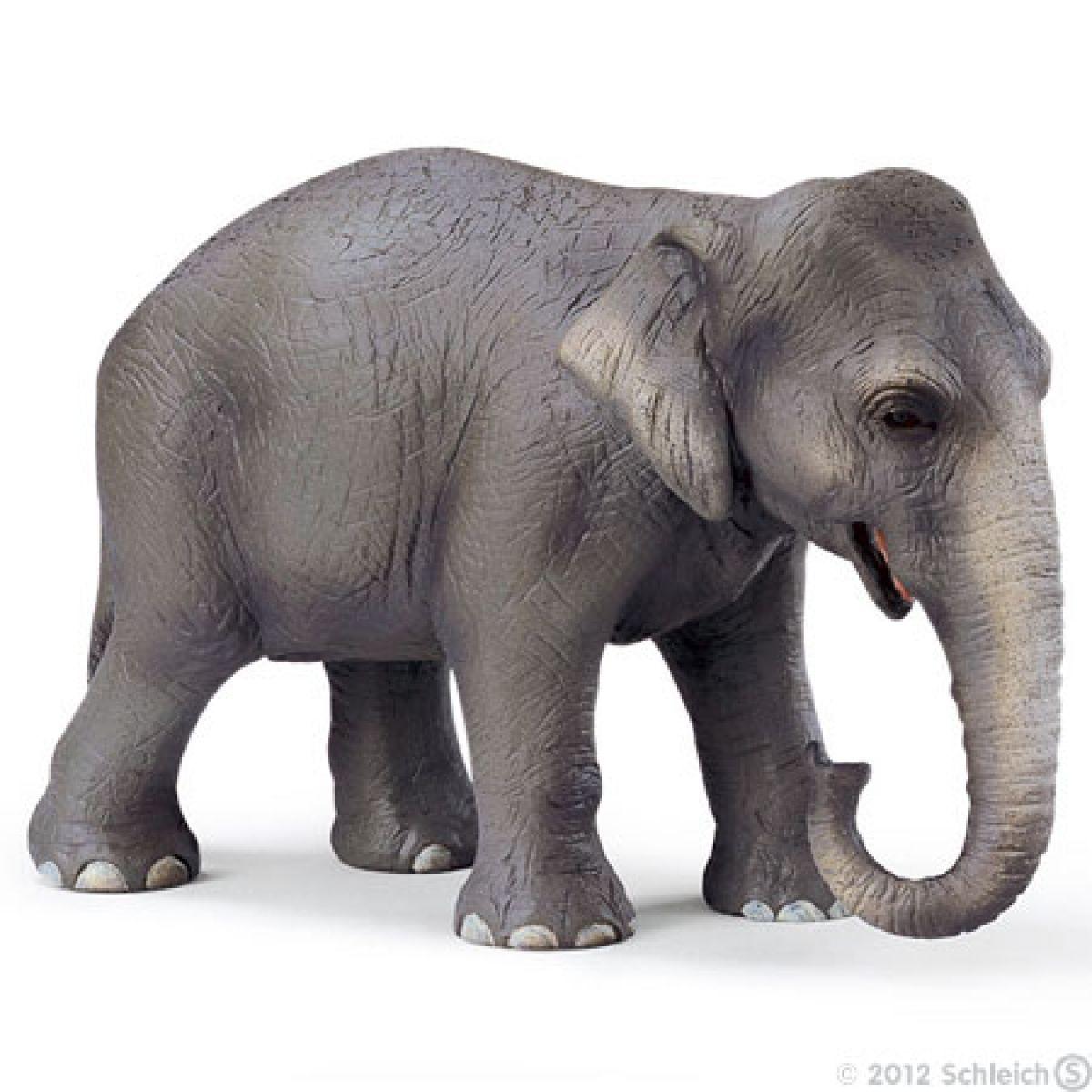 Slon Indický samice Schleich 14344
