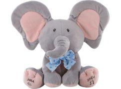 Sloník hra na schovávanou