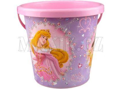 Smoby Disney Princess Kyblík