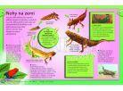 Svojtka Vše co byste měli vědět o zvířatech 4
