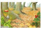 Svojtka Zvířátka z lesa 4