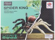 Tesání Pavouk