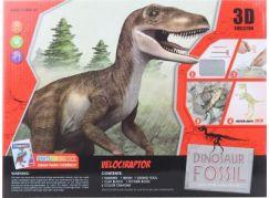Tesání Velociraptor s omalovánkami