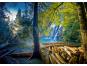 Trefl Puzzle HDR Tajemný les 1000 dílků 2