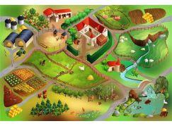 Vopi Dětský koberec Farma 100 x 150 cm