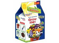 Vypěstuj si květinu Maceška