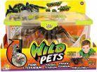 Wild Pets Pavouk v teráriu 3