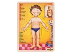 Woody Puzzle lidské tělo AJ
