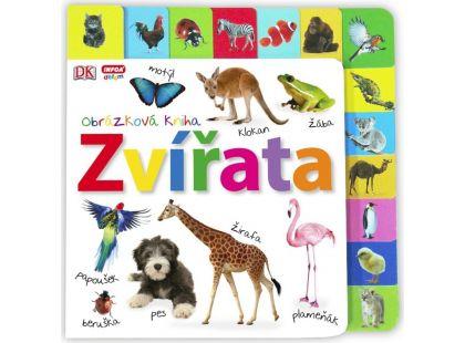 Zvířata Obrázková kniha