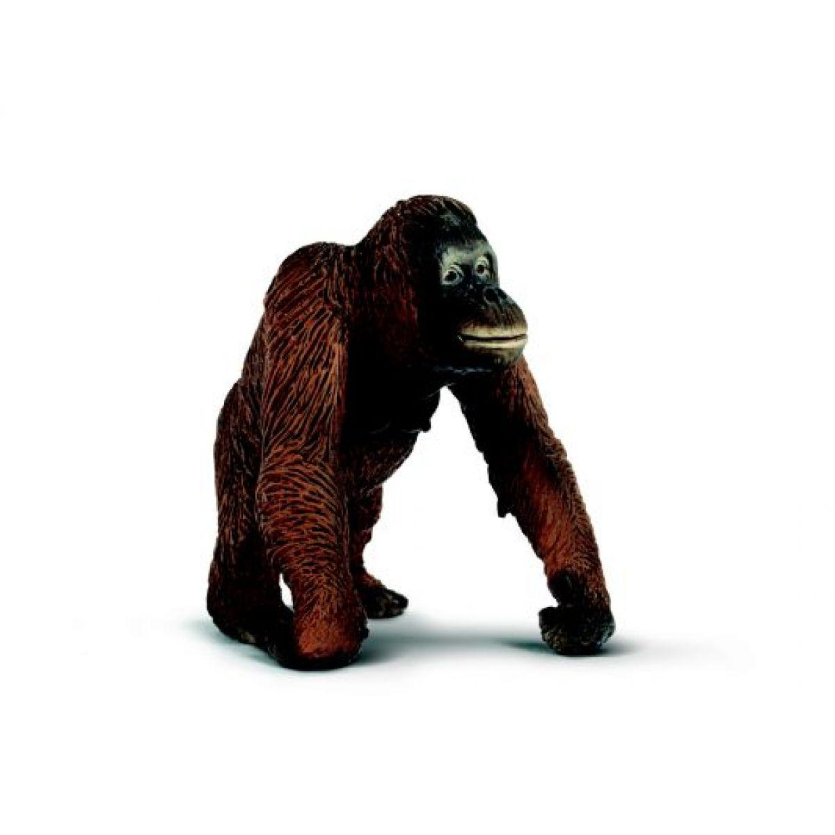 Zvířátko - orangutanka Schleich